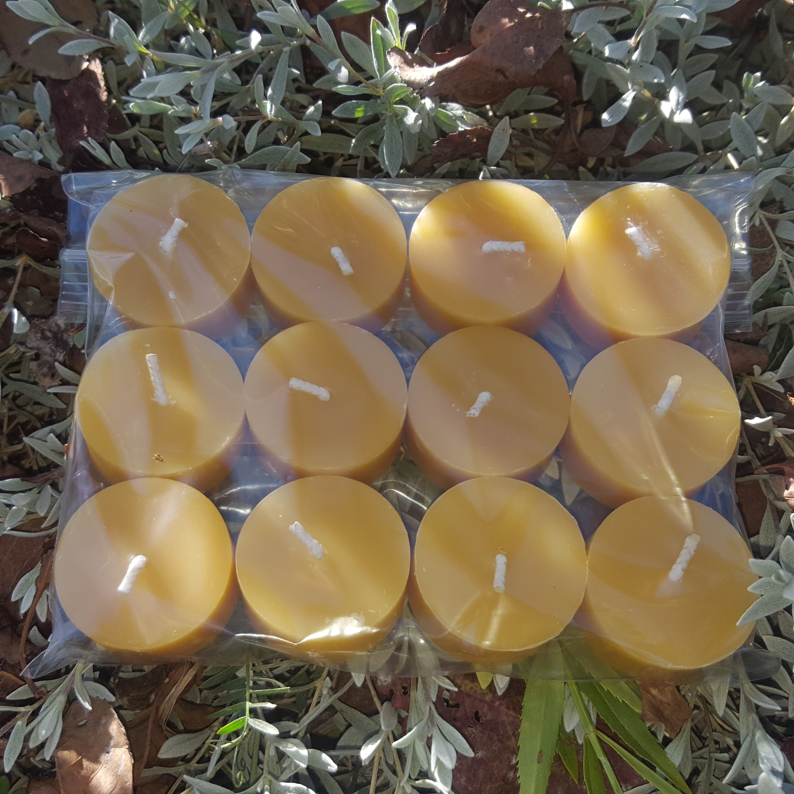 Tea Light Beeswax Candles
