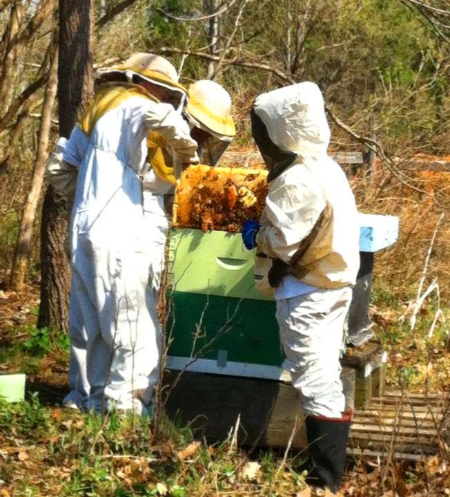 Bee Kind Organics